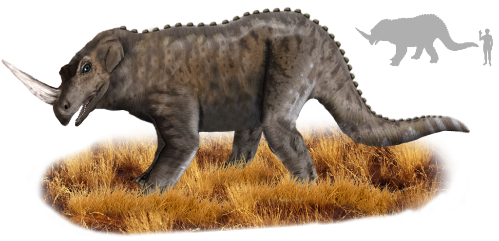 Emela-ntouka, ein angeblicher Dinosaurier   Bild: Tim Bertelink